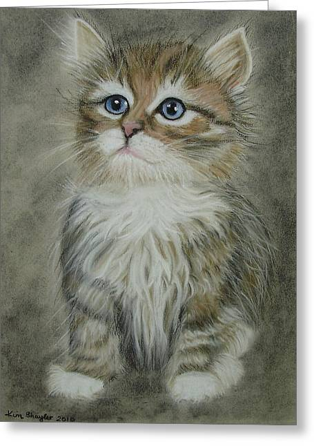 Cute Kitten Pastels Greeting Cards - Sugar Greeting Card by Kim Shayler