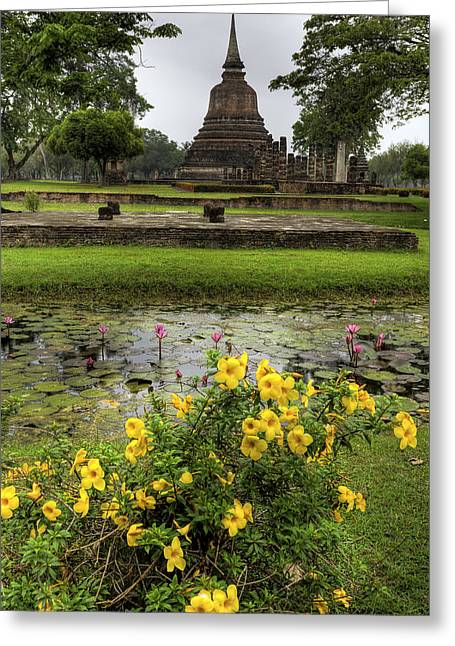 Water Lilly Digital Greeting Cards - Sukhothai Historical Park Greeting Card by Adrian Evans
