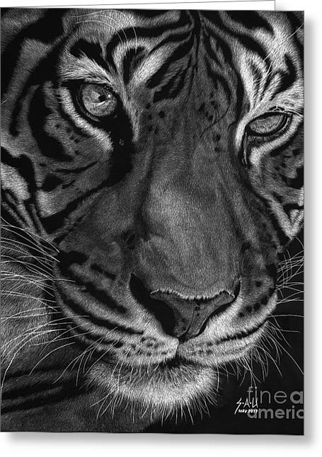 Tiger Drawings Greeting Cards - Sumatran Tiger Greeting Card by Sheryl Unwin