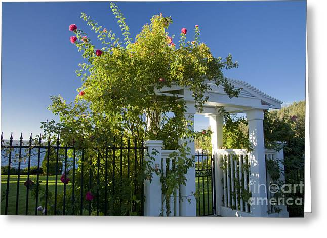Flower Works Greeting Cards - Summer Arbor Greeting Card by Idaho Scenic Images Linda Lantzy