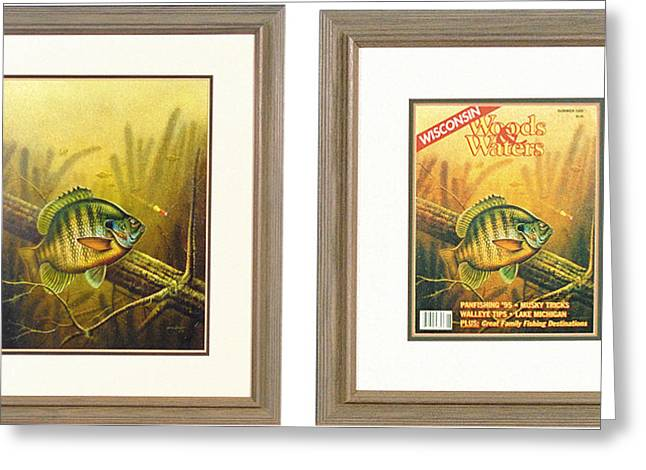 Bobber Greeting Cards - Summer Bluegill Greeting Card by JQ Licensing