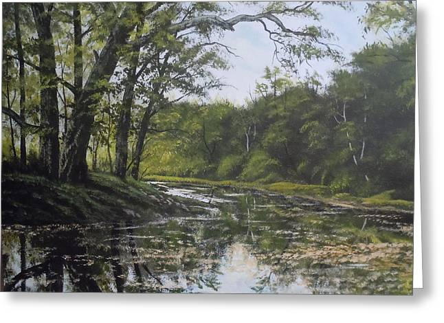 Summer Creek Reflections Greeting Card by James Guentner