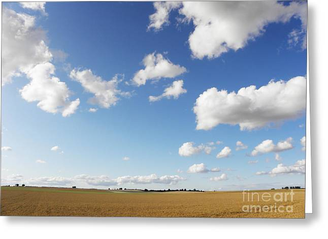 Noon Greeting Cards - Summer field Greeting Card by Pixel Chimp