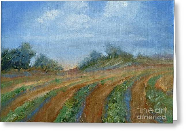 Haystack Framed Prints Greeting Cards - Summer Fields Greeting Card by Sally Simon