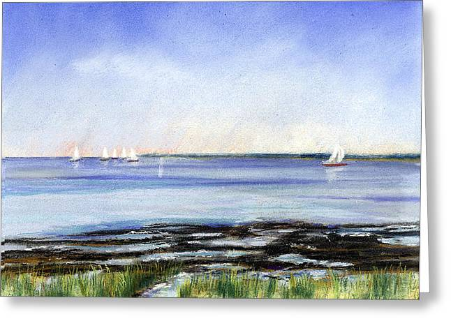 Summer Flats Greeting Card by Paul Gardner