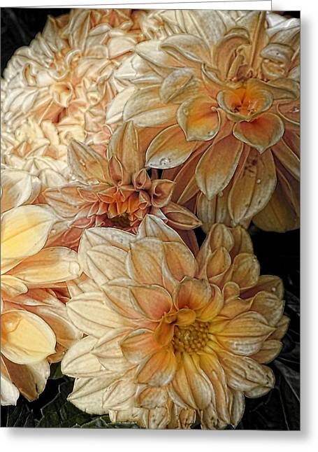 Julie Williams Greeting Cards - Summer Glow Greeting Card by Julie Williams