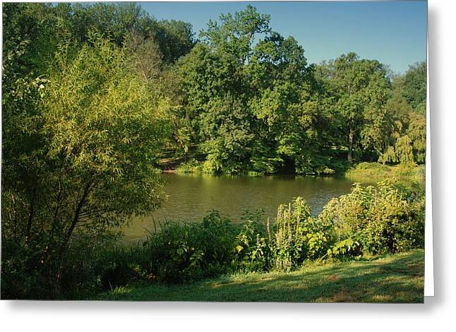 Holmdel Greeting Cards - Summer Happiness - Holmdel Park Greeting Card by Angie Tirado