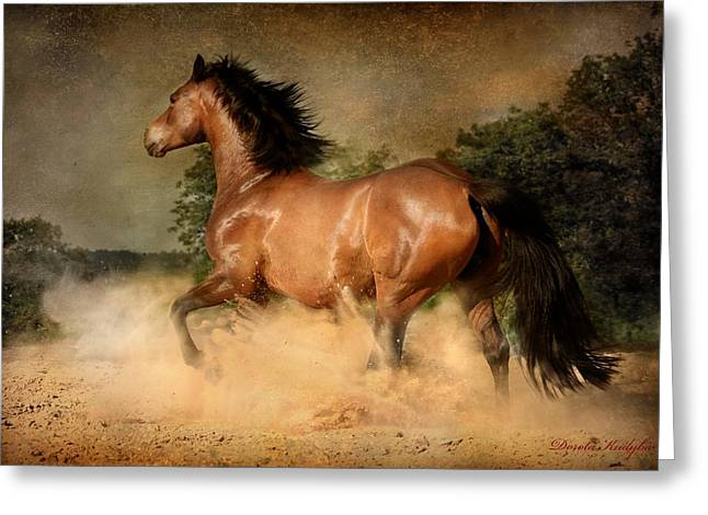 Horse Run Greeting Cards - Summer Heat Greeting Card by Dorota Kudyba