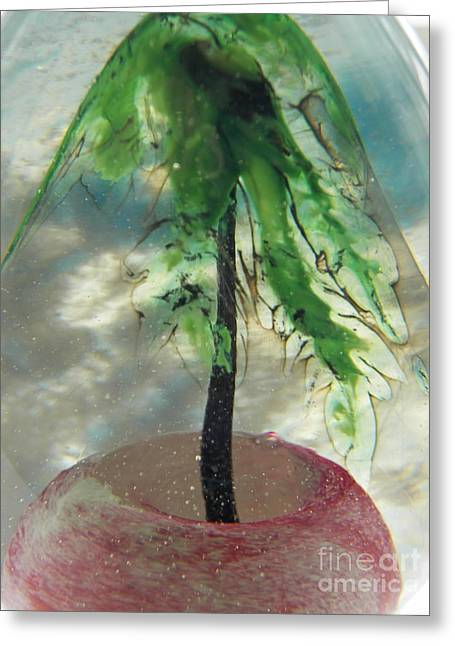 Sand Glass Greeting Cards - Summer in Blown Glass Tree in Pink Sand Greeting Card by Judy Via-Wolff