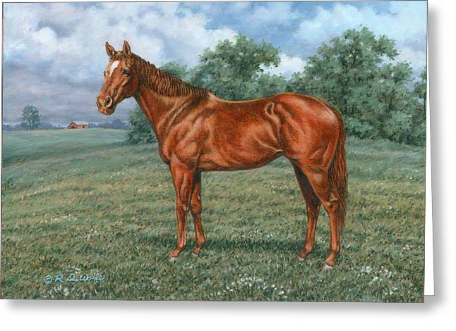 Quarterhorses Greeting Cards - Summer Pasture Greeting Card by Richard De Wolfe