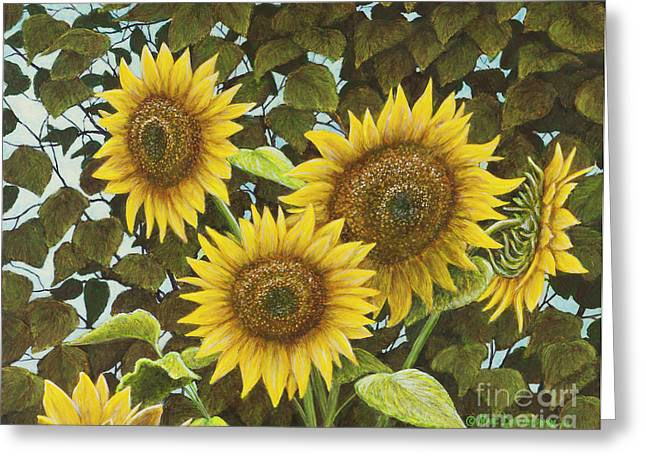 Best Sellers -  - Yellow Sunflower Greeting Cards - Summer Quintet Greeting Card by Marc Dmytryshyn