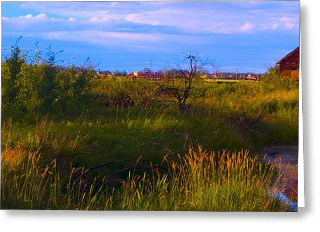 Canadian Prairies Greeting Cards - Summer Shot Of Old Shack By Creek, St Greeting Card by Corey Hochachka