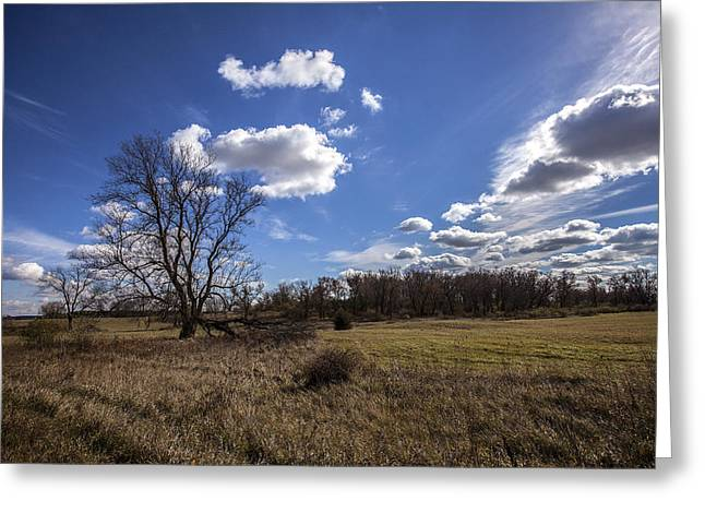 40mm Greeting Cards - Summer Sky in the Fall Greeting Card by CJ Schmit