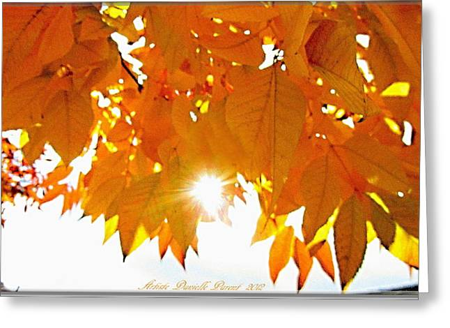 Sun Kissed  Deciduous Greeting Card by Danielle  Parent