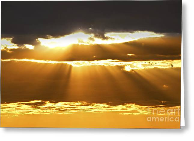 Sun Rays At Sunset Sky Greeting Card by Elena Elisseeva