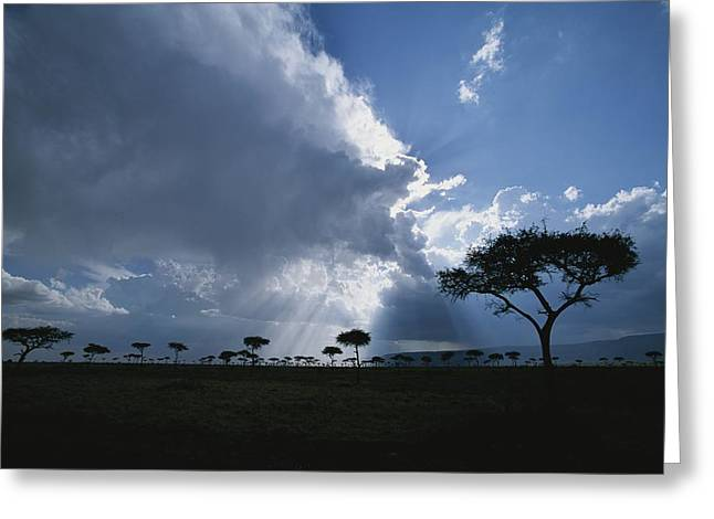 Reverence Greeting Cards - Sun Rays Break Through Clouds Greeting Card by Roy Toft