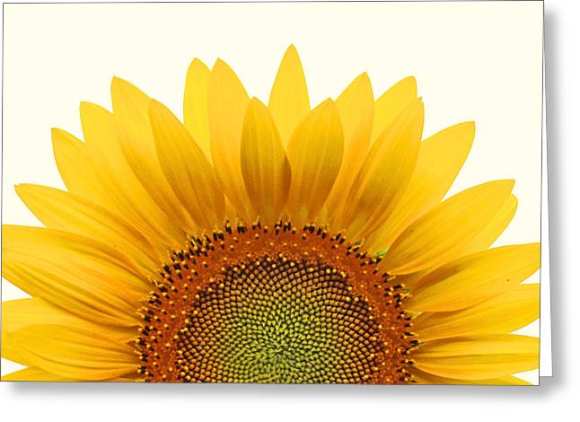 Sunflowers Greeting Cards - Sun Rise Greeting Card by Richard Moiger