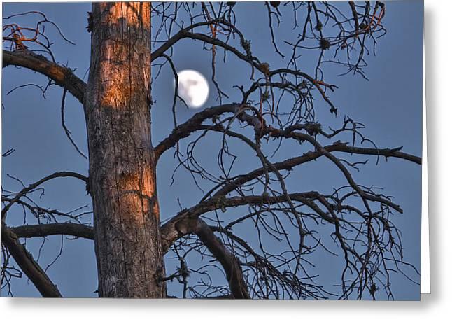 Sun Sets Moon Rizes Greeting Card by Jakub Sisak