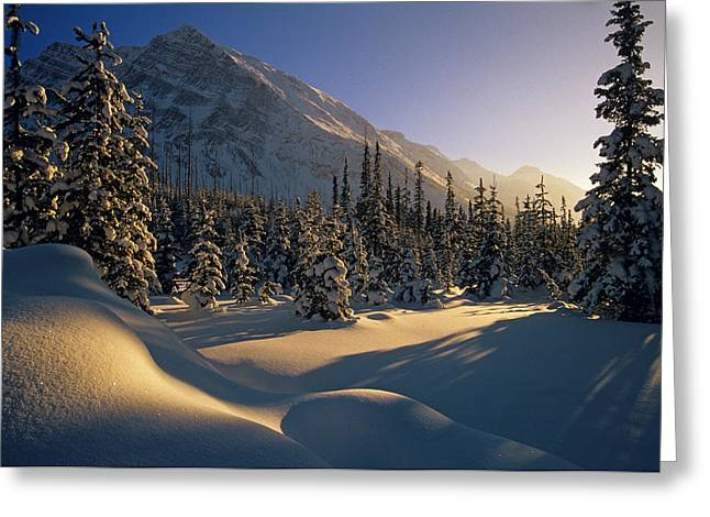 Sun Setting Behind Trees And Mountain Greeting Card by Mike Grandmailson