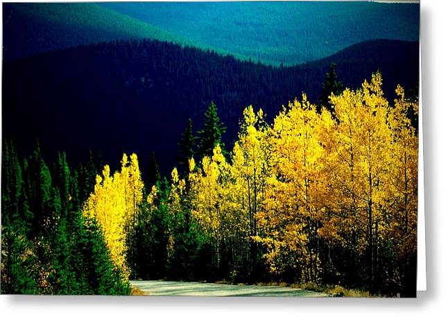 Scenic Drive Greeting Cards - Sunday Drive Greeting Card by Christine Zipps