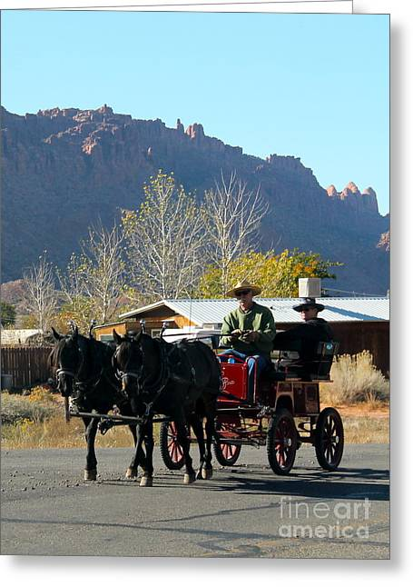Horse And Buggy Greeting Cards - Sunday Drive Greeting Card by Pamela Walrath