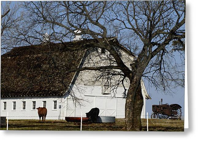 Bucolic Scenes Greeting Cards - Sunday Morning Silence Greeting Card by Ann Powell