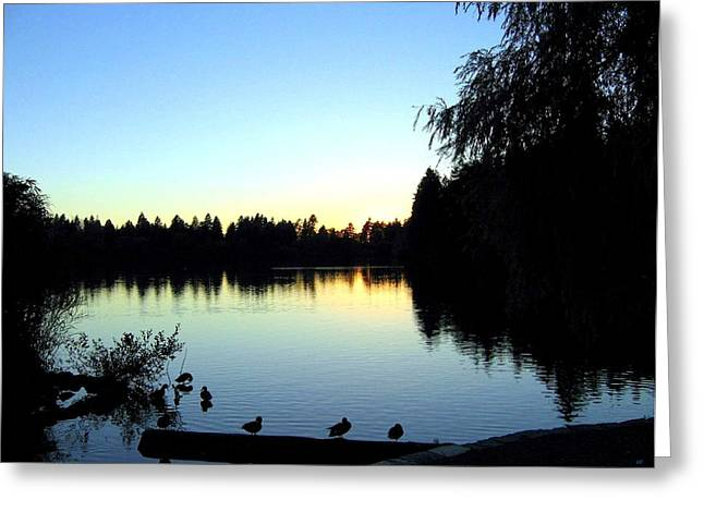 Sundown At Lost Lagoon Greeting Card by Will Borden