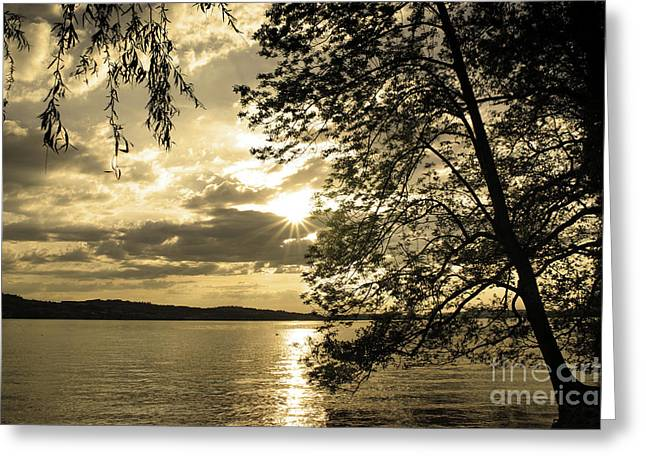 Quietly Greeting Cards - Sundown In The Lake 1 Greeting Card by Bruno Santoro