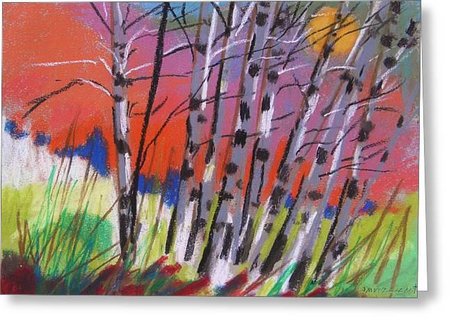Sundown White Birches Greeting Card by John  Williams
