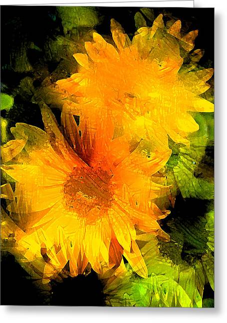 Sunflower 2 Greeting Card by Pamela Cooper