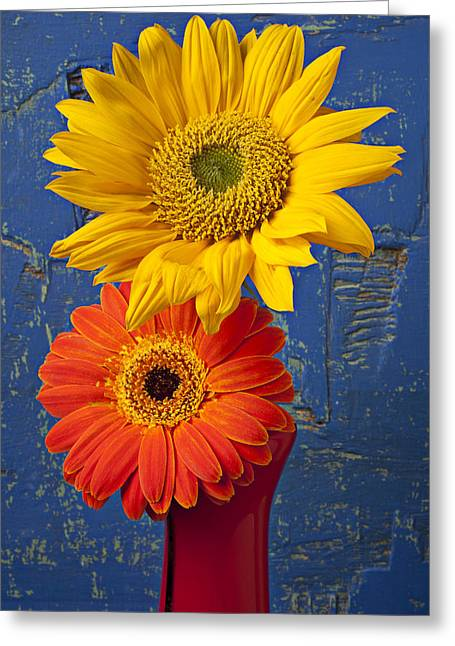 Sunflower And Mum Greeting Card by Garry Gay
