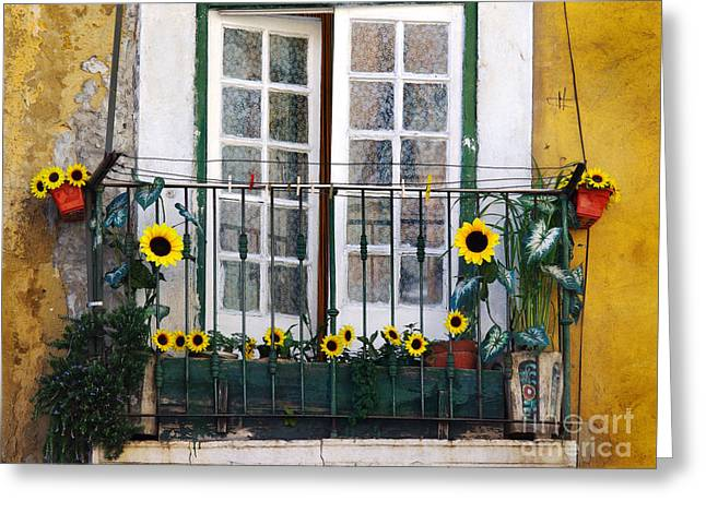 Home Sweet Home Greeting Cards - Sunflower balcony Greeting Card by Carlos Caetano