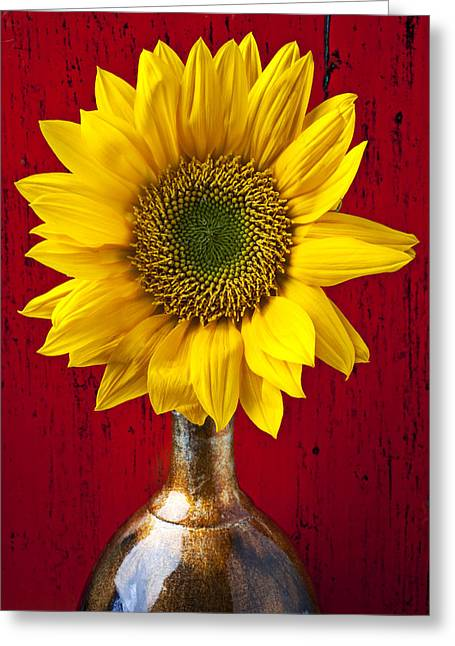 Flora Greeting Cards - Sunflower Close Up Greeting Card by Garry Gay