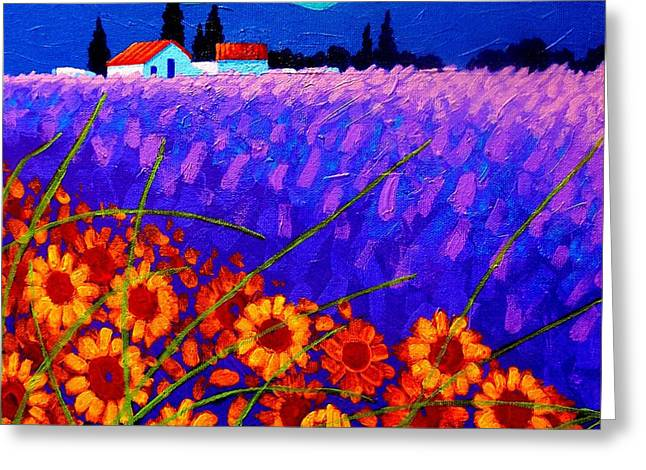 Landscape Framed Prints Greeting Cards - Sunflower Vista Greeting Card by John  Nolan