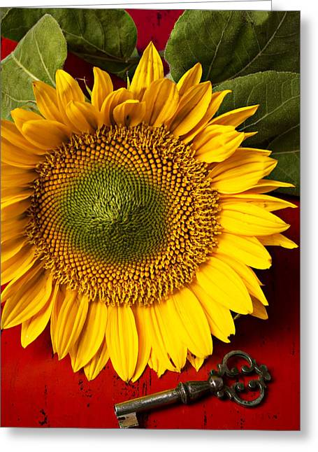 Interior Still Life Greeting Cards - Sunflower with old key Greeting Card by Garry Gay