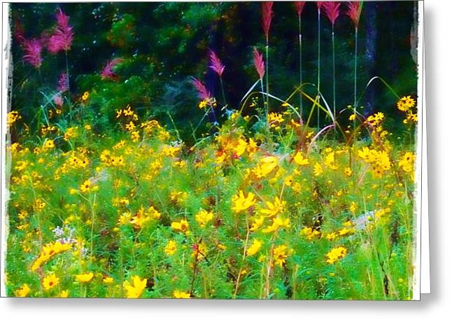 Sunflowers and Grasses Greeting Card by Judi Bagwell