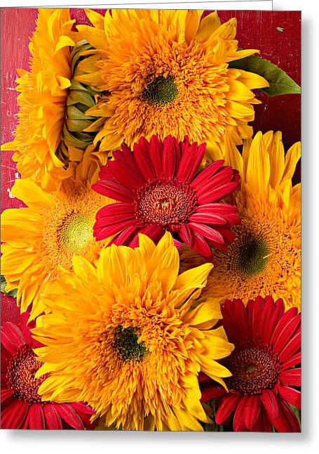Seasonal Bloom Greeting Cards - Sunflowers and red mums Greeting Card by Garry Gay