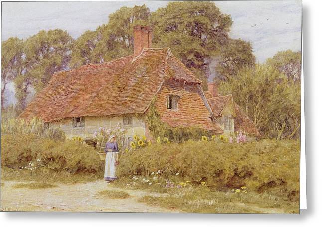 Woman Standing Greeting Cards - Sunflowers Greeting Card by Helen Allingham