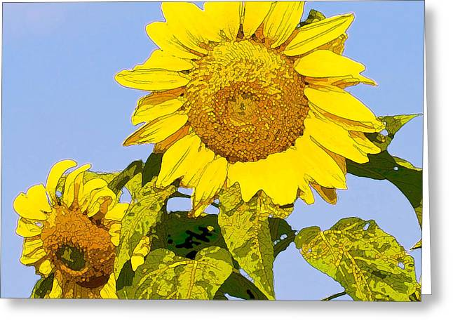 Sunflowers in Morning Greeting Card by Artist and Photographer Laura Wrede