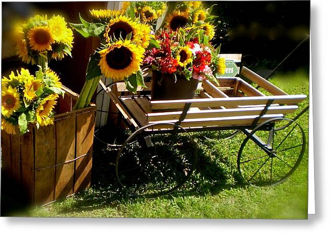 Farm Stand Greeting Cards - Sunflowers  Greeting Card by Susan Elise Shiebler
