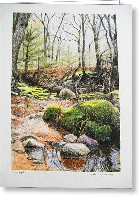 Naturalistic Drawings Greeting Cards - Sunlight Greeting Card by Beth Dennis