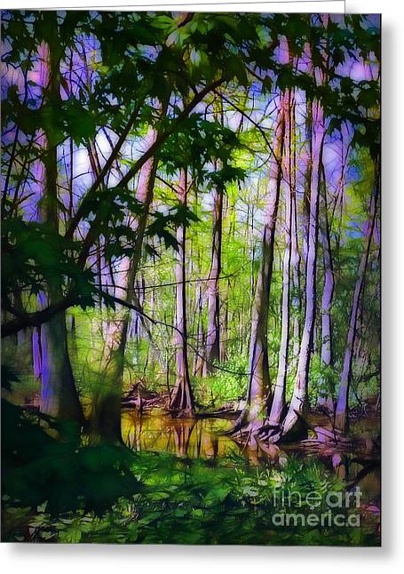 Sunlight In The Swamp Greeting Card by Judi Bagwell