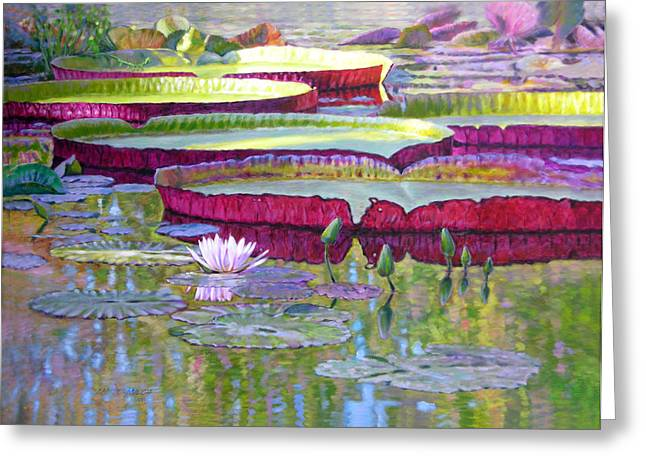 Pond Paintings Greeting Cards - Sunlight on Lily Pads Greeting Card by John Lautermilch