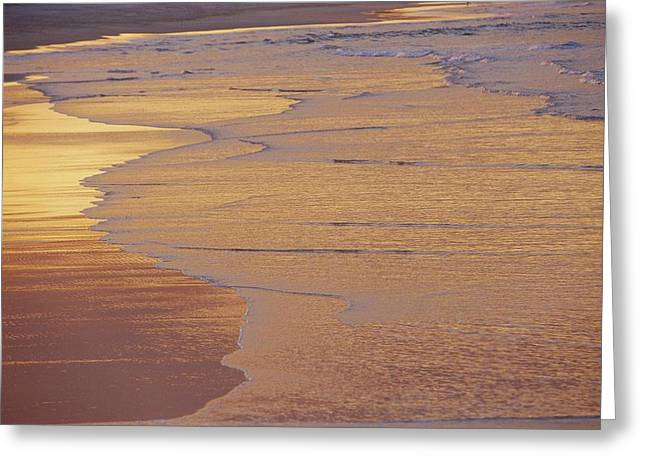 Sunset Scenes. Greeting Cards - Sunlight Reflected On An Ebbing Tide Greeting Card by Jason Edwards