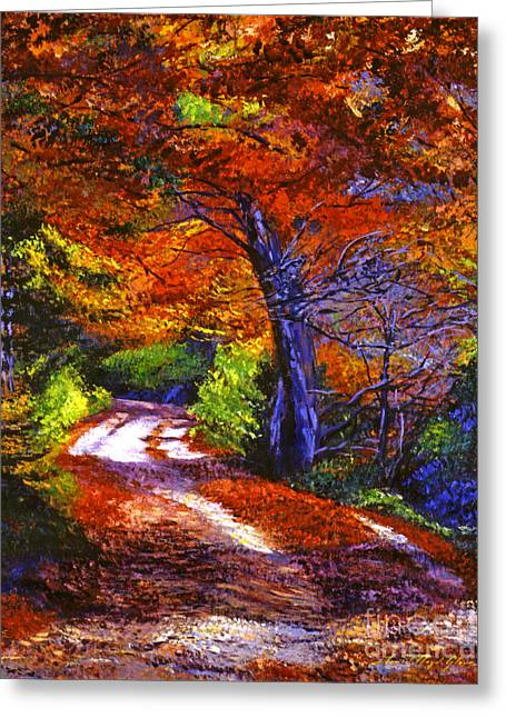 Maple Season Paintings Greeting Cards - Sunlight Through The Trees Greeting Card by David Lloyd Glover