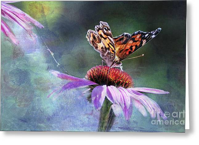Painted Lady Butterflies Greeting Cards - Sunlit Greeting Card by Betty LaRue