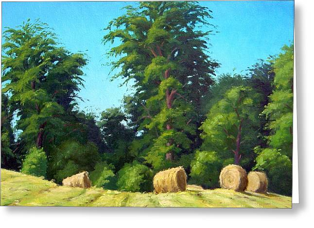 Recently Sold -  - Award Greeting Cards - Sunlit Hay Greeting Card by Rick Hansen
