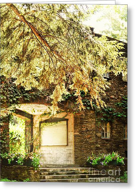 Grapevine Photographs Greeting Cards - Sunlit Stone Building With Grapevines Greeting Card by HD Connelly
