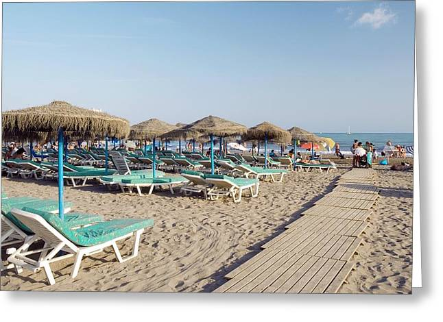 Sunbed Greeting Cards - Sunloungers On A Beach, Spain Greeting Card by Carlos Dominguez