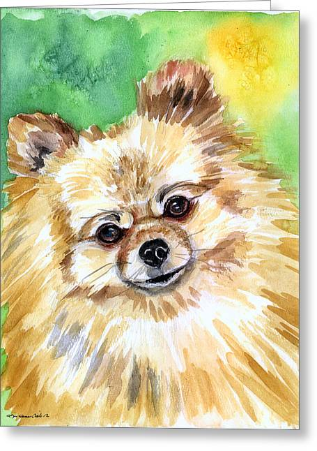 Pomeranian Greeting Cards - Sunny - Pomeranian Greeting Card by Lyn Cook